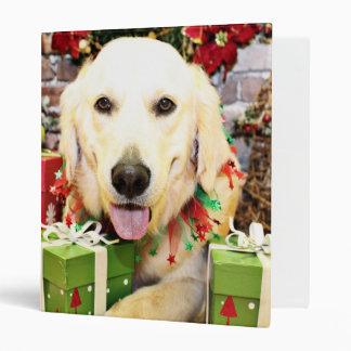 Navidad - golden retriever - retratos de Teagarden