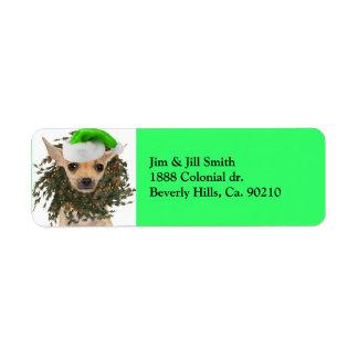 Navidad guirnalda y gorra de la chihuahua etiqueta de remitente