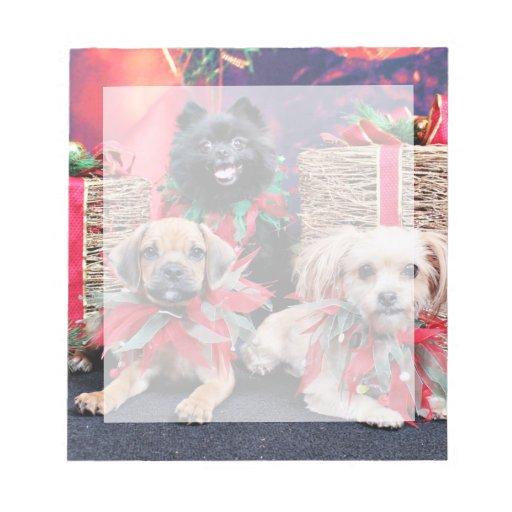 Navidad - Gus de Puggle - Shorkie Charlie Pom Mazi Blocs De Papel
