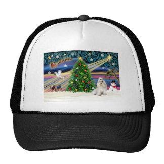 Navidad Havanese mágico (blanco) Gorras