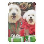 Navidad - Havanese - Steve - Terrier X - Edie