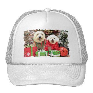 Navidad - Havanese Steve - Terrier X Edie Gorro De Camionero