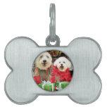 Navidad - Havanese - Steve - Terrier X - Edie Placa De Mascota