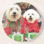 Navidad - Havanese - Steve - Terrier X - Edie Posavaso Para Bebida