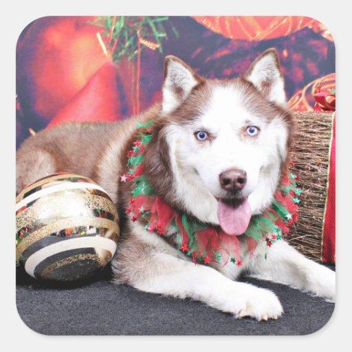 Navidad - husky siberiano - compinche pegatina cuadrada