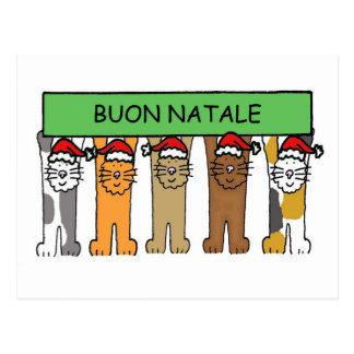 Navidad italiano con los gatos en los sombreros de postales