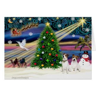 Navidad Jack mágico Russell Terrier (dos) Tarjeta De Felicitación