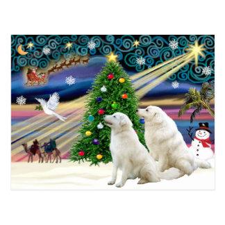 Navidad Kuvasz mágico (dos) Tarjetas Postales