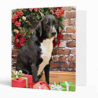 Navidad - Labrador - Joplin