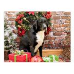 Navidad - Labrador - Joplin Postal