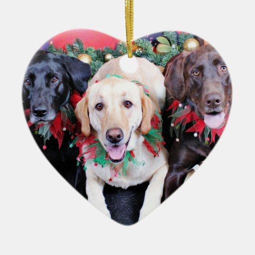 Navidad - Labrador - punta y moca del tipo