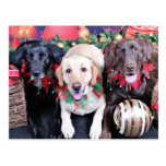 Navidad - Labrador - punta y moca del tipo Postal