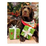 Navidad - Labrador - señora Postal