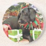 Navidad - Labrador X de oro - Abby Posavaso Para Bebida