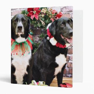Navidad - Labradors - Joplin y Lennon