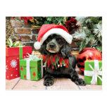 Navidad - LhasaPoo - Leo Postal