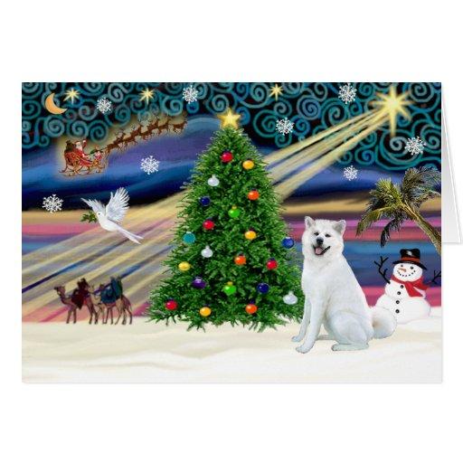 Navidad Magia-Akita White1 Tarjeta De Felicitación