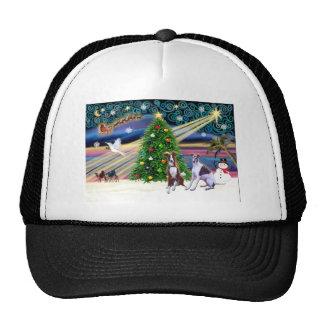 Navidad Magic-Whippet9and10 Gorras