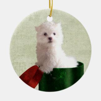 Navidad maltés del perrito adornos de navidad
