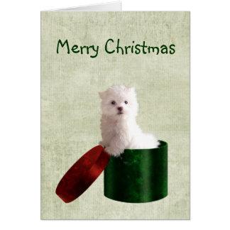 Navidad maltés del perrito tarjeta de felicitación