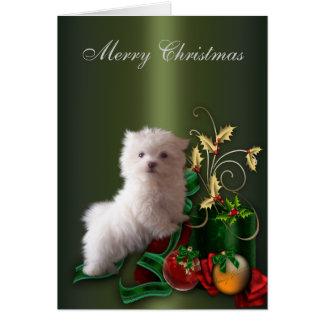 Navidad maltés del perro de perrito tarjeton