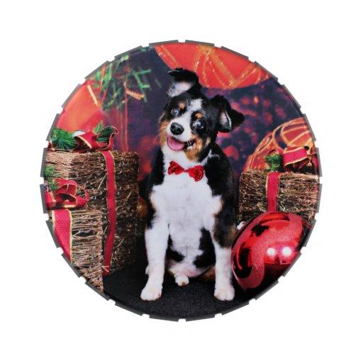 Navidad - mini Aussie - Jack Frascos De Dulces