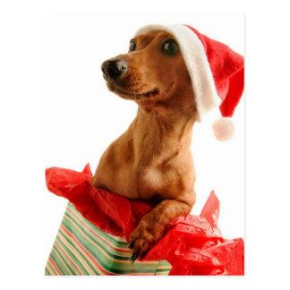 Navidad mismo de un Doxie Postales