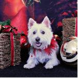 Navidad - montaña del oeste Terrier - Madison Escultura Fotográfica