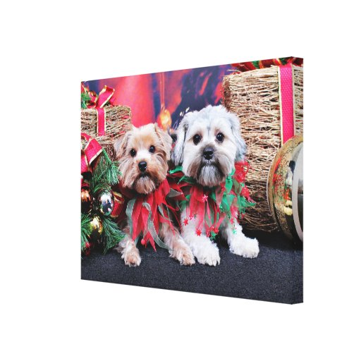 Navidad - Morkie - Jackie y Tabby Lona Estirada Galerias