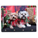 Navidad - Morkie - Jackie y Tabby Pizarra Blanca