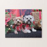 Navidad - Morkie - Jackie y Tabby Rompecabeza Con Fotos