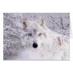 Navidad o lobo del invierno tarjeta de felicitación