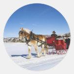 Navidad occidental - trineo del navidad del caball etiquetas redondas