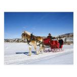 Navidad occidental - trineo del navidad del caball postales