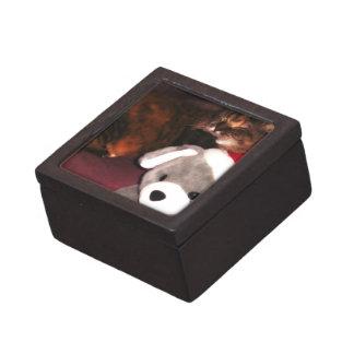 Navidad oso y caja de gato caja de regalo de calidad