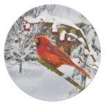 Navidad, pájaro cardinal, nieve, placa platos para fiestas