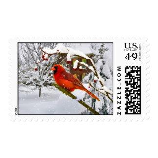 Navidad, pájaro cardinal, nieve timbres postales