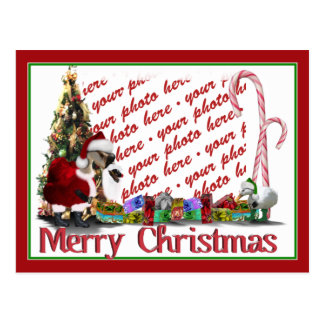 Navidad palmído postales