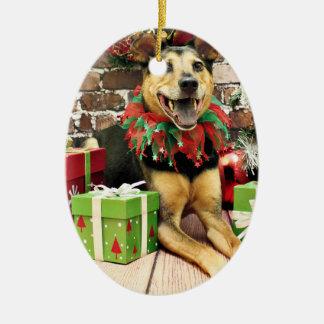 Navidad - pastor alemán X - Bailey