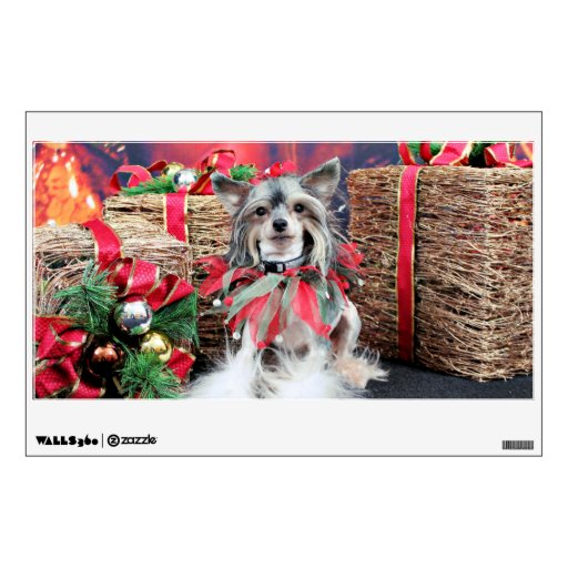 Navidad - perro con cresta chino - Sheeba