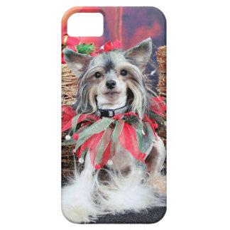 Navidad - perro con cresta chino - Sheeba iPhone 5 Cárcasas
