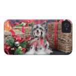 Navidad - perro con cresta chino - Sheeba iPhone 4 Case-Mate Carcasa