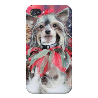 Navidad - perro con cresta chino - Sheeba iPhone 4 Protectores