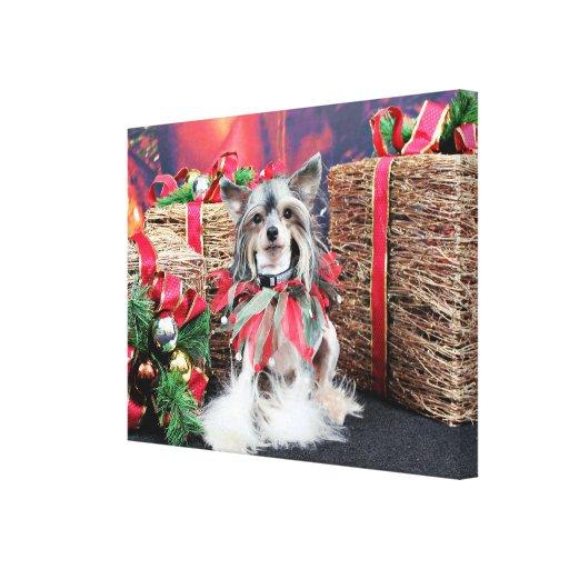 Navidad - perro con cresta chino - Sheeba Lona Envuelta Para Galerias