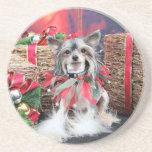 Navidad - perro con cresta chino - Sheeba Posavasos Cerveza