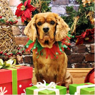 Navidad - perro de aguas de rey Charles arrogante Esculturas Fotográficas