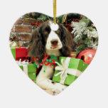 Navidad - perro de aguas de saltador inglés - Kinz