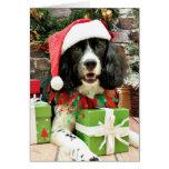 Navidad - perro de aguas de saltador inglés - Lucy