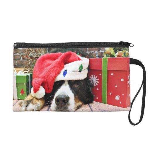 Navidad - perro de montaña de Bernese - Mya
