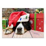 Navidad - perro de montaña de Bernese - Mya Tarjeta De Felicitación